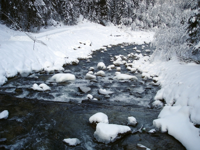 lungo il fiume  Val Badia entrata della valle